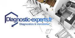 Diagnostic Experts
